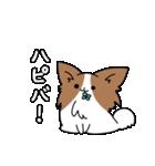 誕生日お祝いスタンプ -ピッピとぱぴ子-(個別スタンプ:30)