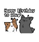 誕生日祝い 黒い犬ピッピとパピヨンぱぴ子(個別スタンプ:33)