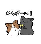 誕生日祝い 黒い犬ピッピとパピヨンぱぴ子(個別スタンプ:36)