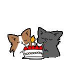 誕生日祝い 黒い犬ピッピとパピヨンぱぴ子(個別スタンプ:38)