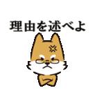 りけんぶんけん ~正反対のいぬ2匹~(個別スタンプ:04)