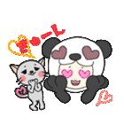 パンダ娘とぬこ。(個別スタンプ:01)