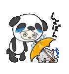パンダ娘とぬこ。(個別スタンプ:25)