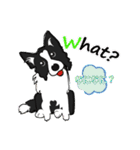 NO.1が好きな僕の犬(個別スタンプ:02)