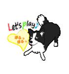 NO.1が好きな僕の犬(個別スタンプ:04)