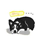 NO.1が好きな僕の犬(個別スタンプ:07)