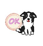 NO.1が好きな僕の犬(個別スタンプ:09)