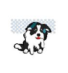 NO.1が好きな僕の犬(個別スタンプ:12)