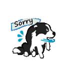 NO.1が好きな僕の犬(個別スタンプ:13)