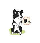 NO.1が好きな僕の犬(個別スタンプ:28)