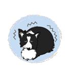 NO.1が好きな僕の犬(個別スタンプ:29)