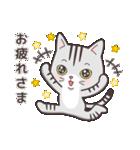 ペルシャ猫こゆき(寒い日常会話)(個別スタンプ:08)