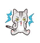 ペルシャ猫こゆき(寒い日常会話)(個別スタンプ:31)