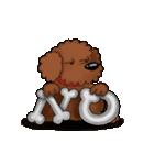 愛しのトイプードル かわいい犬スタンプ(個別スタンプ:02)