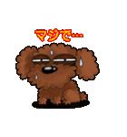 愛しのトイプードル かわいい犬スタンプ(個別スタンプ:06)