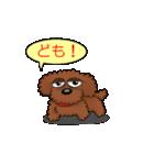 愛しのトイプードル かわいい犬スタンプ(個別スタンプ:07)