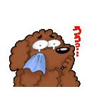 愛しのトイプードル かわいい犬スタンプ(個別スタンプ:13)
