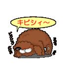愛しのトイプードル かわいい犬スタンプ(個別スタンプ:17)