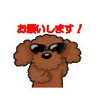 愛しのトイプードル かわいい犬スタンプ(個別スタンプ:18)