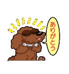 愛しのトイプードル かわいい犬スタンプ(個別スタンプ:26)