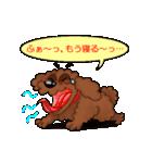 愛しのトイプードル かわいい犬スタンプ(個別スタンプ:35)