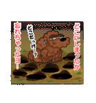 愛しのトイプードル かわいい犬スタンプ(個別スタンプ:37)