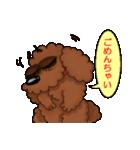 愛しのトイプードル かわいい犬スタンプ(個別スタンプ:38)