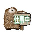 原人 MOFU(個別スタンプ:05)