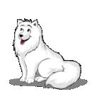 Pocket K-9: 雪の犬(個別スタンプ:01)