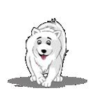 Pocket K-9: 雪の犬(個別スタンプ:02)