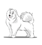 Pocket K-9: 雪の犬(個別スタンプ:03)