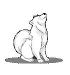 Pocket K-9: 雪の犬(個別スタンプ:04)