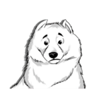 Pocket K-9: 雪の犬(個別スタンプ:07)