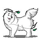 Pocket K-9: 雪の犬(個別スタンプ:19)