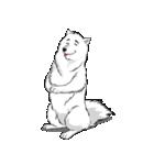 Pocket K-9: 雪の犬(個別スタンプ:31)