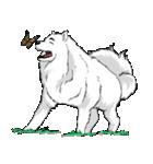 Pocket K-9: 雪の犬(個別スタンプ:34)