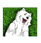 Pocket K-9: 雪の犬(個別スタンプ:36)