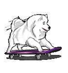 Pocket K-9: 雪の犬(個別スタンプ:40)
