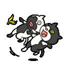 ブサ猫シリーズ ロマとマロ 顔芸ギャグ編(個別スタンプ:37)