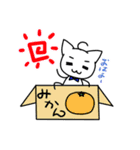 いぬねこの演劇日和(個別スタンプ:05)