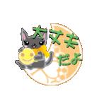 ちびちびネコ(個別スタンプ:17)