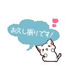 だいすきネコちゃん敬語編(個別スタンプ:14)