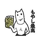 貧乏白くま(個別スタンプ:1)