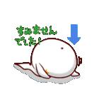 白イルカのベルカちゃん(個別スタンプ:23)