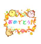 ぴよこ3兄妹(個別スタンプ:5)