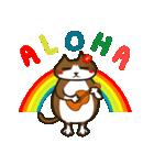 ハワイのSERIの愛猫ViViスペシャル①(個別スタンプ:01)