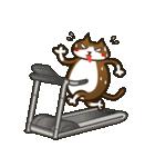 ハワイのSERIの愛猫ViViスペシャル①(個別スタンプ:03)