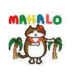 ハワイのSERIの愛猫ViViスペシャル①(個別スタンプ:04)
