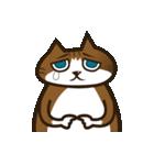 ハワイのSERIの愛猫ViViスペシャル①(個別スタンプ:14)