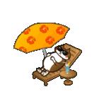 ハワイのSERIの愛猫ViViスペシャル①(個別スタンプ:18)
